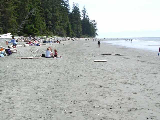 Juan De Fuca Botanical Beach British Columbia Provincial