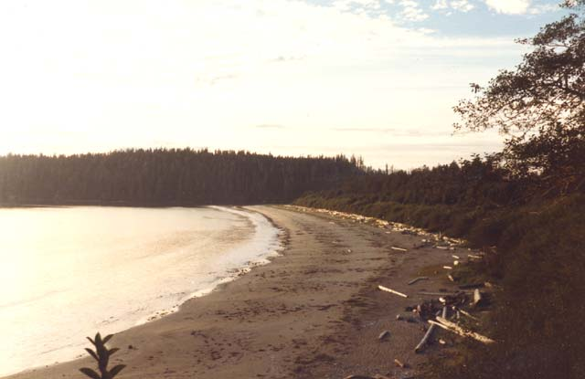Lonely Planet Vancouver Island